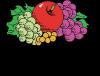 Fruit_Of_The_Loom-logo-D14BF48174-seeklogo.com